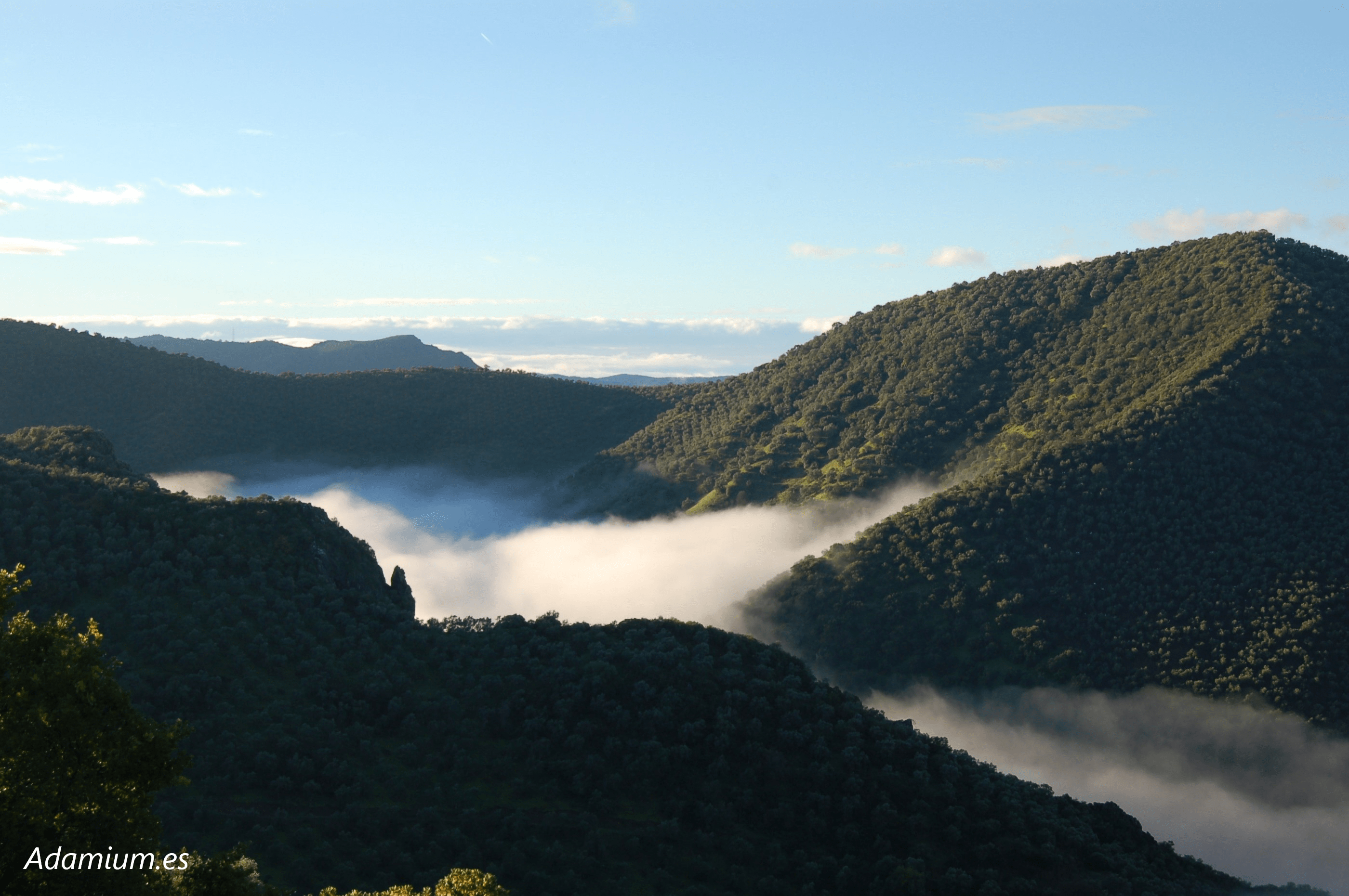 Olivares de Adamuz, Paisajes de Olivar de Andalucía, Patrimonio Mundial de la UNESCO